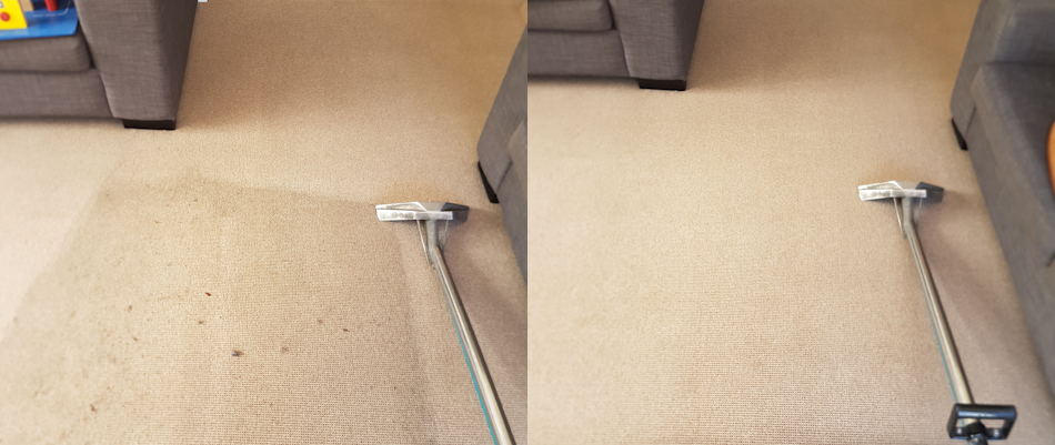 two photos side by side demonstrating a before and after of carpet cleaning, on the left side of the image we see an area of carpet that is dark and dirty and uncleaned also in this side of the photo is the Carpet Cleaning Titanium Suction and steaming tool, on the right side of the image we see the same floor but it is now carpet cleaned with the titanium carpet cleaning tool that is also still in the image, the new carpet looks clean, white and shiny as if brand new