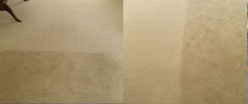 A before and after of two images, on the left is a carpet that has been half cleaned by Elite Cleaning Services Christchurch and the other photo is the same carpet but the photo is taken horizontally.